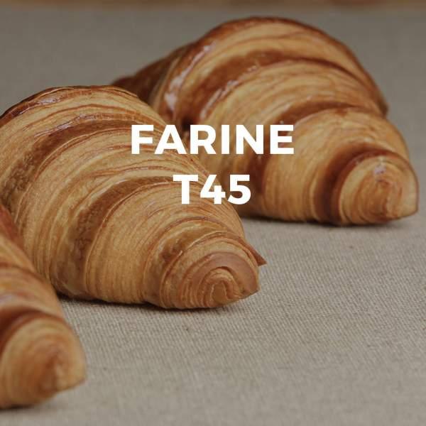 Faina T45